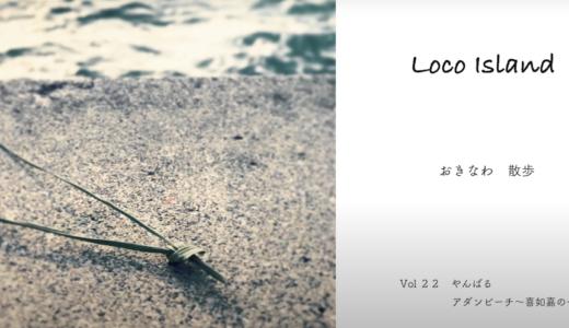 国頭村楚洲のアダンビーチで波乗りからシュノーケリング